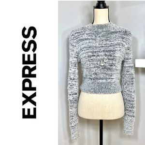 Fuzzy Plush Cropped Sweater White Gray by Express